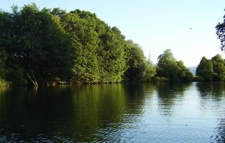 Giocare la pesca in una picca dalla barca per giocare