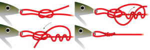 http://wired2fish.scout.com/story/1468379-how-to-tie-the-rapala-loop-knot