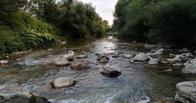 V RD Bistrica Domžale vabijo k udeležbi ob Dnevu slovenskih ribičev