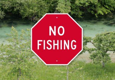 """Ko jih """"slišiš"""", ker loviš ribe"""