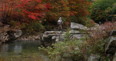 Muharjeva jesen